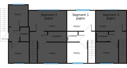 segment1pie